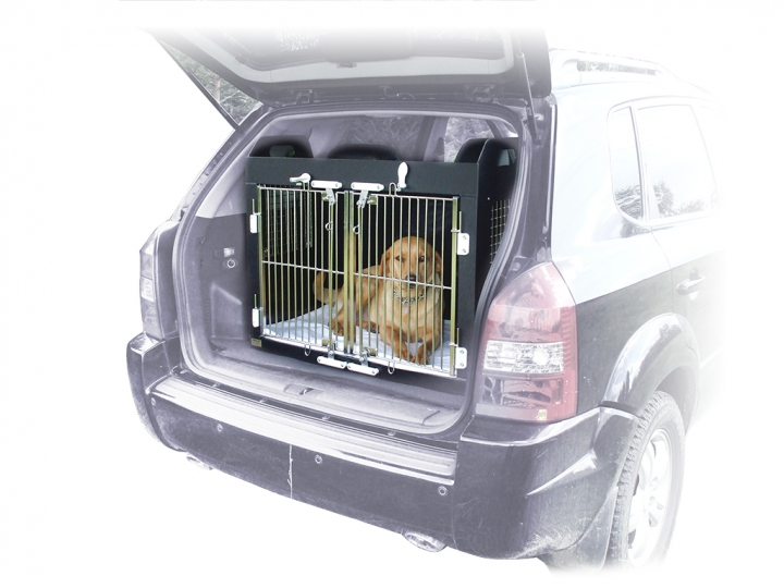 car-cage