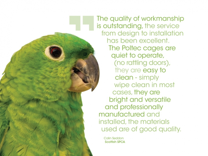 parrot-quote